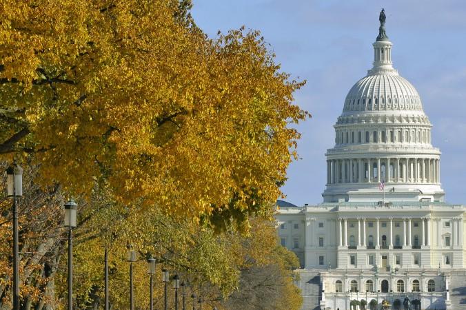 Здание конгресса США в Вашингтоне, округ Колумбия. 6 ноября 2011 года. Фото: Mladen Antonov/AFP/Getty Images
