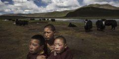 Тибет переживает «золотой век», заявляет компартия в новом докладе