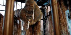 Дмитрий Волков привез Оракултанга на Burning Man