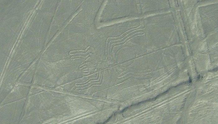 Власти Перу не могут сохранить геоглифы в пустыне Наска