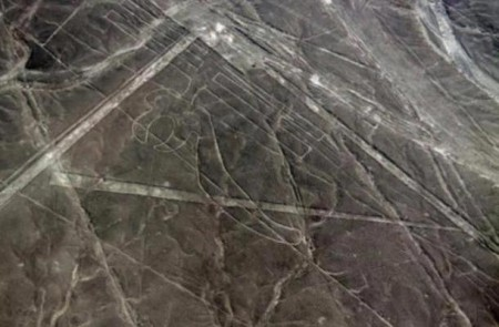 Parrot-geoglyph-at-Nazca_1