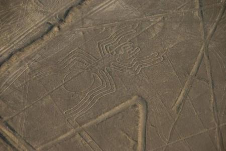 Spider-Nazca