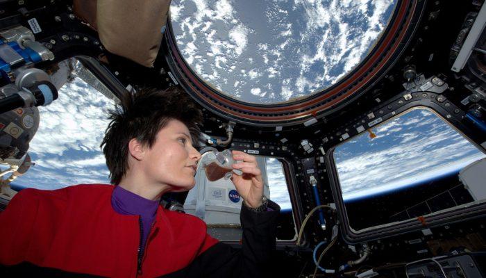 В столичных вузах установят аппараты с «космической едой»