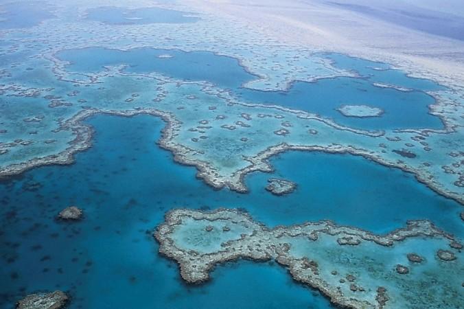 Большой Барьерный риф. Фото: pixabay.com/CC0 Public Domain