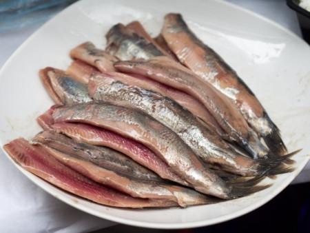 herring-640x480