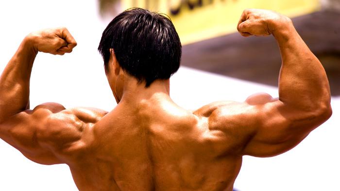 мышцы, бодибилдер, сила