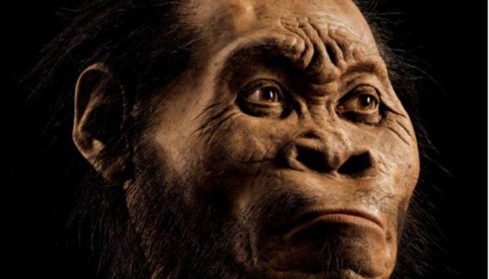 В Южной Африке обнаружены останки неизвестных существ, похожих на человека