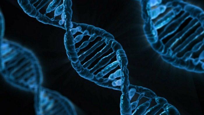 Якутские учёные открыли смертельное генетическое заболевание