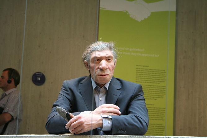 Неандерталец в современном костюме. Модель в музее неандертальцев, Дюссельдорф.  Фото: Einsamer Schütze via Wikimedia Commons, CC BY-SA