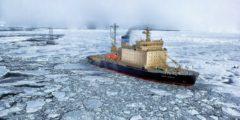Российская антарктическая экспедиция приостановила исследования из-за отсутствия средств