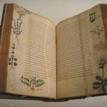Медицинский трактат в пяти томах De Materia Medica, написанный древнегреческим врачом Диоскоридом, Византия, XV век. Фото: World Imaging/Wikimedia Commons