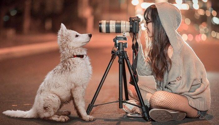 Скажи мне, кто твой друг, и я скажу кто ты! Определяем характер человека по породе его собаки