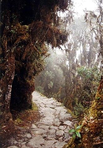 Дорога инков в Мачу-Пикчу
