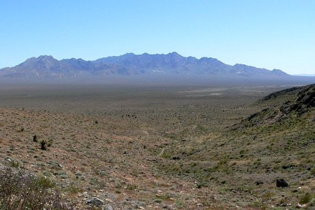 Восточная часть пустыни Мохаве. Фото: Stan Shebs/wikipedia.org/CC BY-SA 3.0
