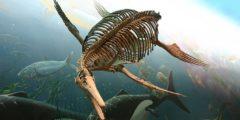 Древние морские чудовища: окаменелые скелеты ихтиозавров найдены в Великобритании