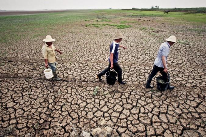 Провинция Ухань переживает тяжелейшую за последние 60 лет засуху. Фото: From a source inside China
