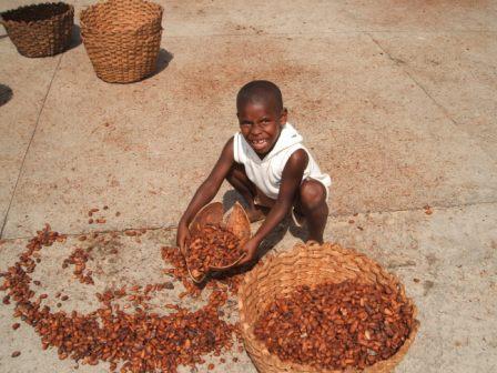 Ребёнок, перебирающий какао-бобы. Фото: Salvor/wikipedia.org/CC BY-SA 3.0