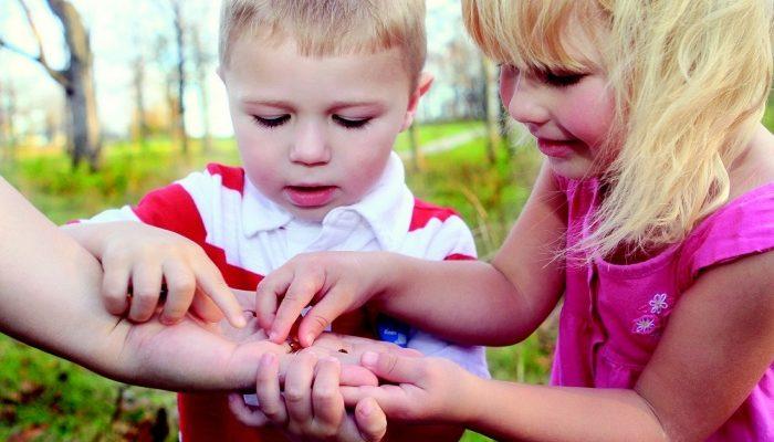 Развитие умственных способностей ребёнка