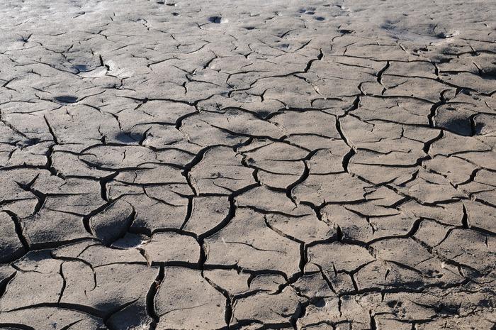 В Северной Корее разразилась сильнейшая засуха