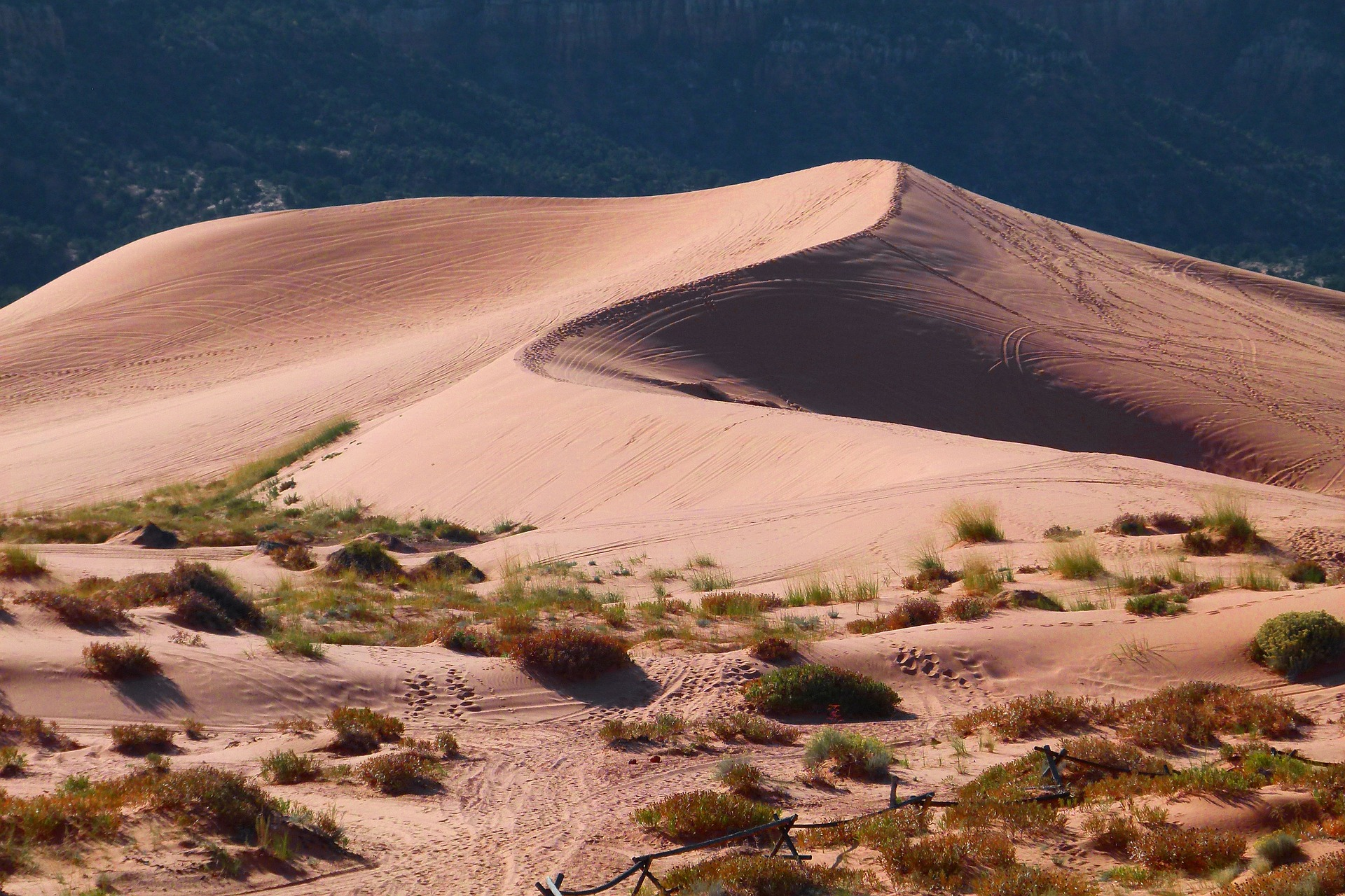 Сахара. Фото: pixabay.com/ CC0 Public Domain