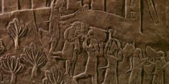 Трагедия в древнем иранском городе: раскопки раскрыли массовое захоронение II века до н.э. в Хафт Тере