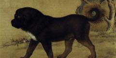 Собаки в Древнем Китае: человек не всегда друг