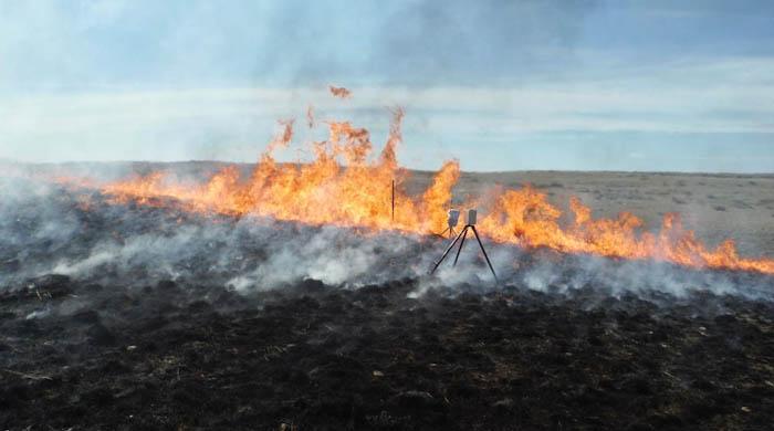 Учёные устроили искусственный пожар для выявленияя археологических памятников. Фото предоставлено Бюро США по управлению земельными ресурсами