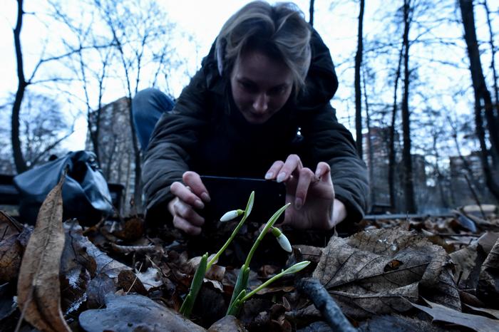 Москва, погода, Новый год, температурный рекорд, Ботанический сад МГУ