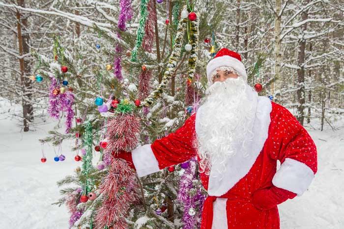 Новогодняя сказка с Дедом Морозом в рязанском лесу. Фото: Сергей Лучезарный/Великая Эпоха