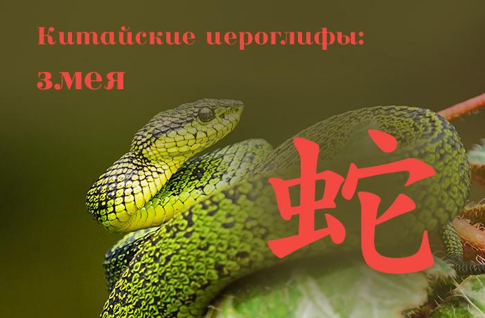 Китайские иероглифы: 蛇 (змея)