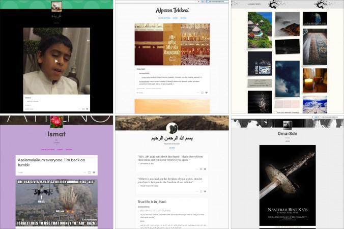 Скриншоты блогов ИГ на Tumblr. Скриншот/Tumblr