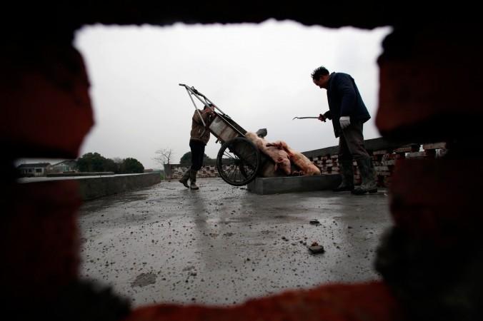естьяне сваливают мёртвых свиней на пункт санобработки, построенный в муниципалитете Цзясинь провинции Чжэцзян, 13 марта 2013 года. Фото: AFP/AFP/Getty Images