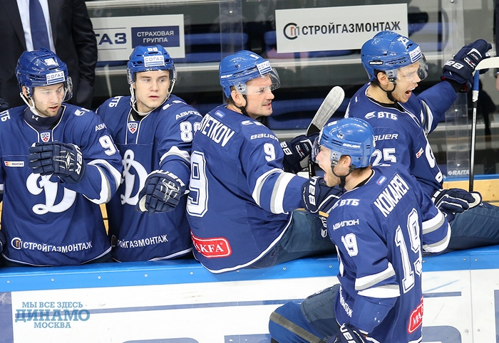 Фото: dynamo.ru