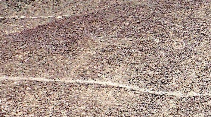 Ещё 24 древних геоглифа обнаружены на плато Наска в Перу