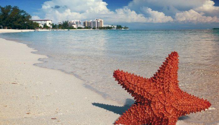 Доминиканская республика: тропический рай