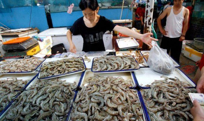 В Китае в креветок вводят гель, чтобы заработать