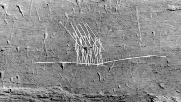 Обнаруженный на острове Оук петроглиф местных аборигенов, на котором, по мнению Дж. Хаттона Пулитцера, изображены римские легионеры. Фото предоставлено J. Hutton/Pulitzer/InvestigatingHistory.org