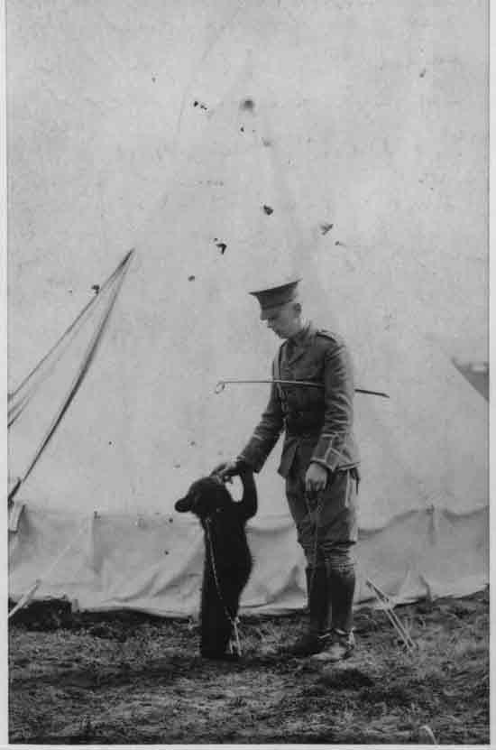 Винни — талисман Корпуса, 1914 год. Фото: Mitrius/wikipedia.org/Public Domain