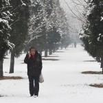 Провинциальные китайские власти не посчитали наличие снега достаточным основанием, чтобы включить обогреватели в доме престарелых. Фото: Greg Baker/AFP/Getty Images