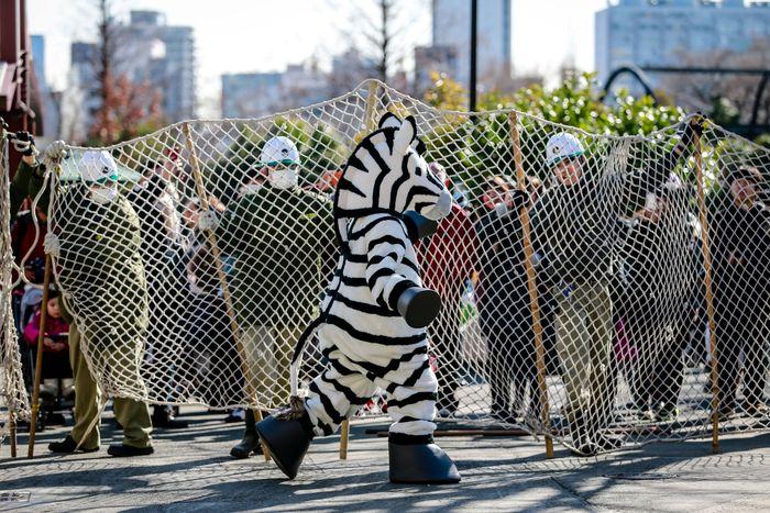 В японских зоопарках поминают умерших за год животных