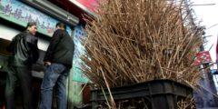 Какие опасности таят в себе китайские палочки для еды
