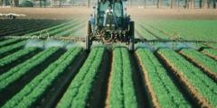 Нитраты и пестициды — враги здоровья?