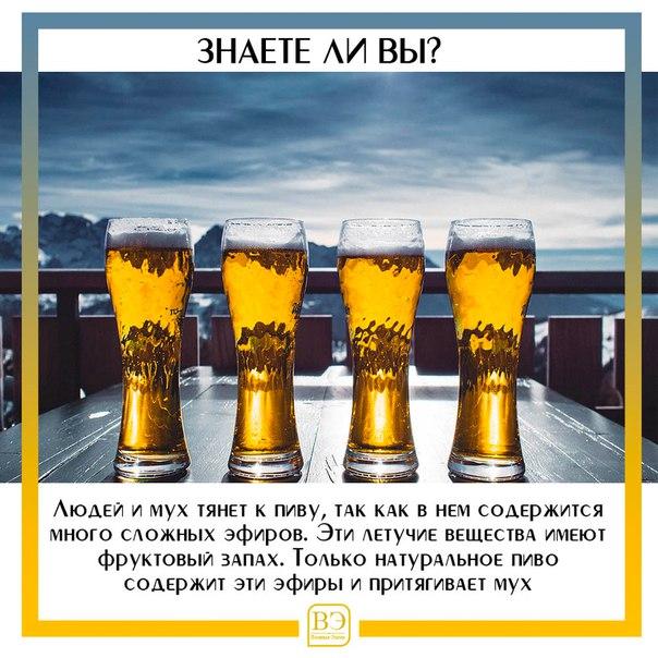 алкоголь, эфиры