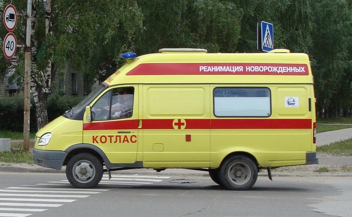 Фото: Георг Pik/commons.wikimedia.org/CC0 1.0