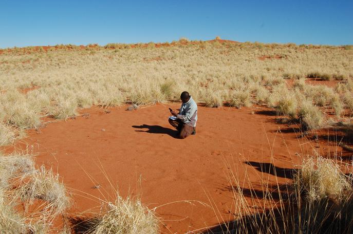Таинственные круги в Намибии. Фото: Jeremy T. Hetzel/flickr.com/CC BY 2.0