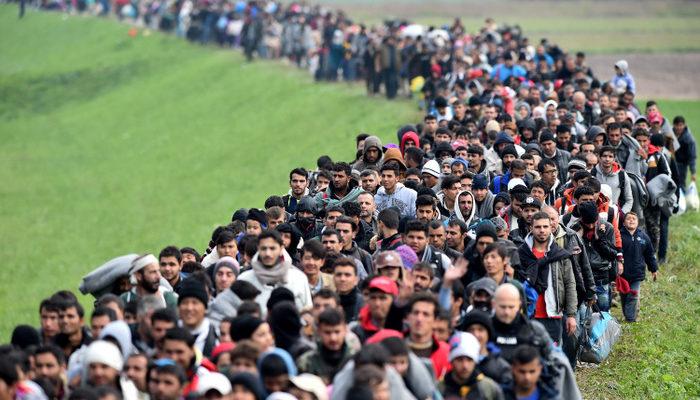 Миграционный кризис ведёт к расколу ЕС?