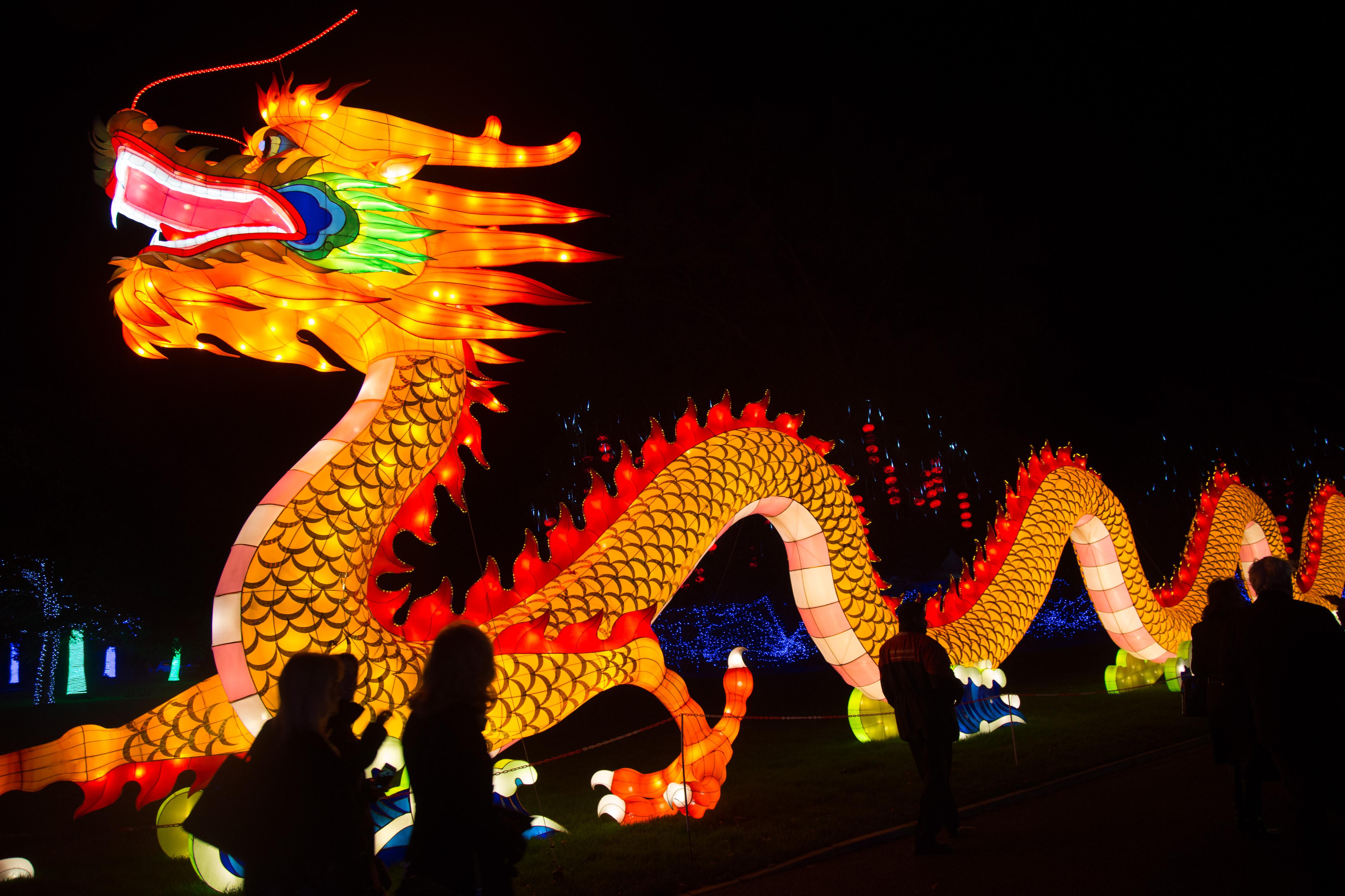 Освещённый китайский дракон в Вилтшире, Англия, 12 ноября 2015 г. Фото: Matt Cardy/Getty Images for Longleat