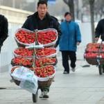 Крестьяне продают клубнику на улицах Пекина 2 февраля 2010 г. Фото: Frederic J. Brown/AFP/Getty Images