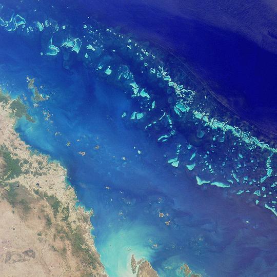 Участок Большого барьерного рифа — вид из космоса. Фото: NASA