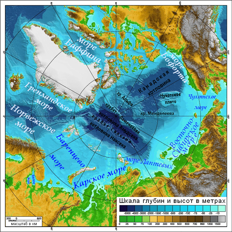 Рельеф дна Северного Ледовитого океана. Фото: Mikkalai/wikipedia.org/CC BY-SA 3.0